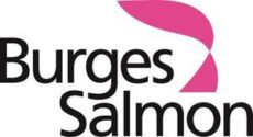 Burges Salmon – The life cycle of a family and divorce lawyer